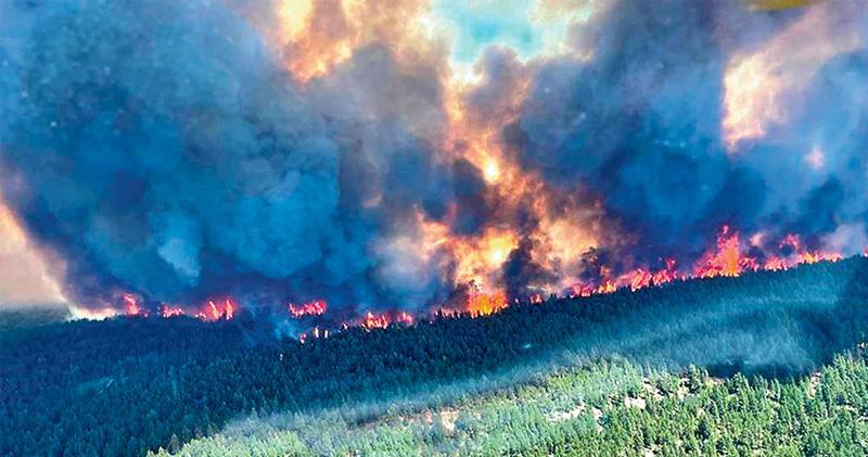 美加超級熱浪 卑詩省增逾百猝死 加國小鎮49.5℃ 專家警告氣候暖化「助燃」